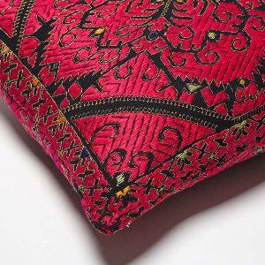Hiral, Swati Cushion